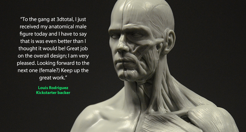 Cgtalk The First Affordable Anatomical Figure